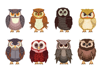 Owl or Buho Theme Collection - vector #421871 gratis