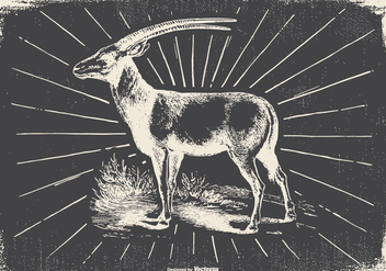 Vintage Antilope Illustration - бесплатный vector #422491