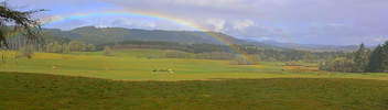 Rainbow Meadow - image #422691 gratis