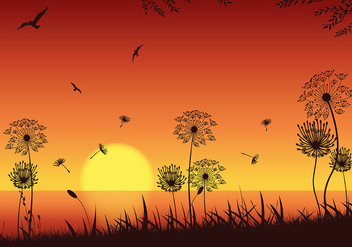Blowball Sunset Seashore Vector - Free vector #423681