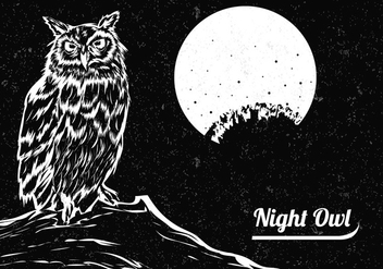 Hand Drawn Of Black And White Owl With The Moon - Kostenloses vector #424311