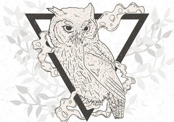 Hand Drawn Of Black And White Owl - vector gratuit #424321