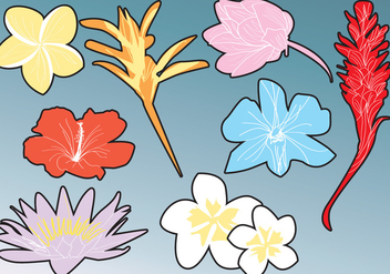 Hawaiian Flower Silhouettes - Free vector #425051