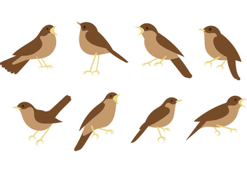 Free Nightingale Vectors - vector #425131 gratis