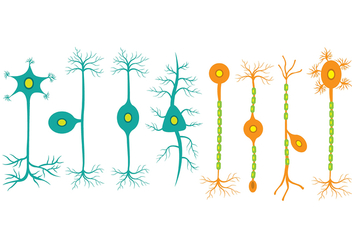 Neuron icons - Free vector #425331