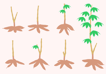 Cassava Tree Free Vector - бесплатный vector #426321