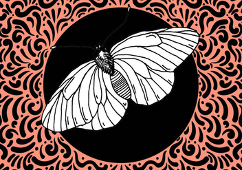 Ornate Moth Design - vector #428031 gratis