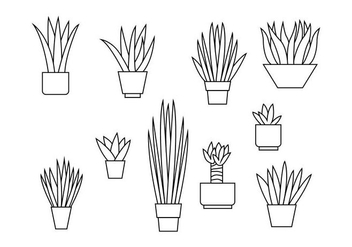 Free Yucca Line Illustration Vector - Free vector #428901