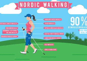 Nordic Walking Infographics Data - Free vector #431131