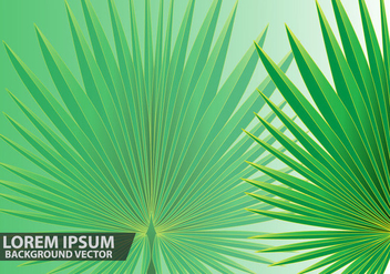 Palm Leaves Background Vector - Kostenloses vector #433271