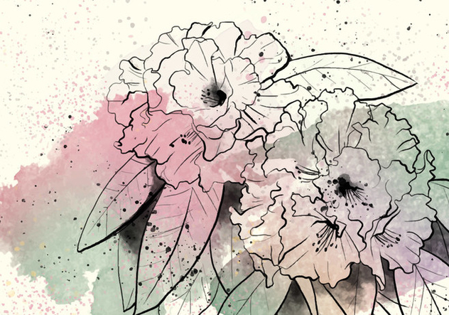 Rhododendron Watercolor Illustration - Free vector #434041