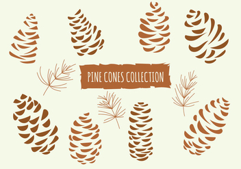 Hand Drawn Vector Illustrations. Collection of Pine Cones - vector #434111 gratis
