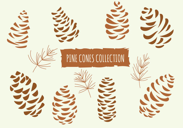 Hand Drawn Vector Illustrations. Collection of Pine Cones - Free vector #434111