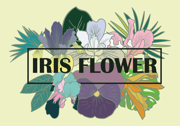 Iris Flower Element Vector - vector gratuit #434141
