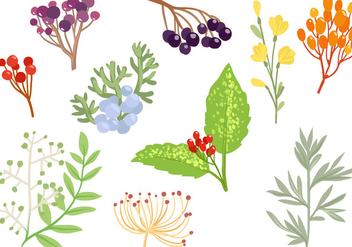 Free Decorative Herbs Vectors - бесплатный vector #434781