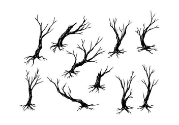 Free Tree Silhouette Vector - Free vector #435041