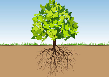 Tree with Roots and Leafs colorfull - vector #435071 gratis