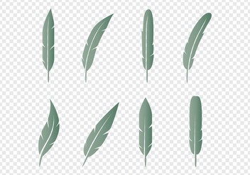 Feather Icons Set - vector gratuit #435131