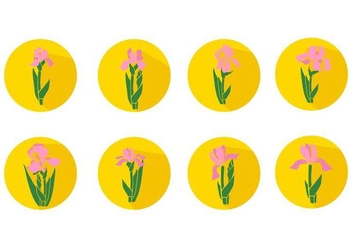 Free Iris Flower Icons Vector - бесплатный vector #436031