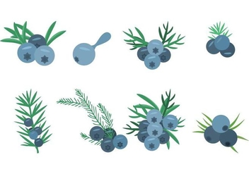 Free Juniper Icons Vector Illustration - Free vector #436351