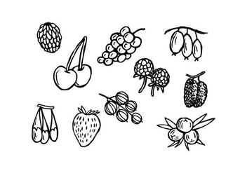 Free Berries Hand Drawn Icon Vector - vector gratuit #436621