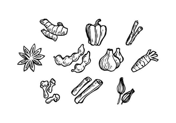 Free Herbal Spice Icon Vector - vector #437401 gratis