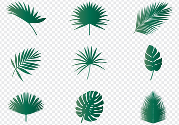 Palm Leaves - Kostenloses vector #438411