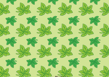 Stevia Leaves Green Background Pattern Vector - Kostenloses vector #439411