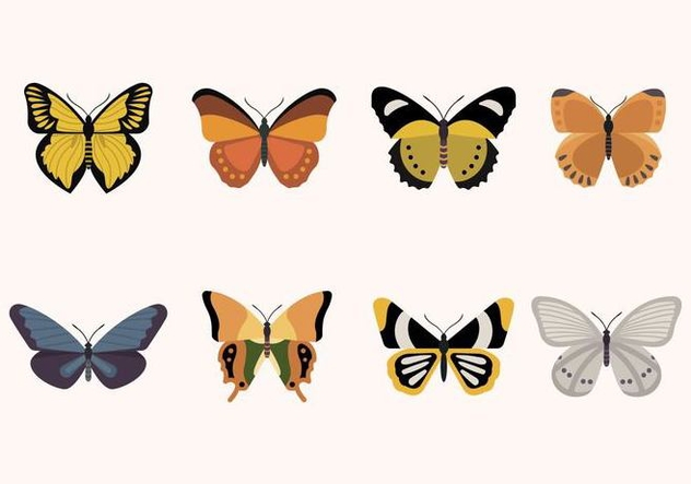 Flat Butterfly Vectors - Free vector #439871