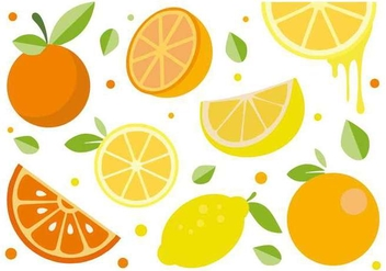 Free Citrus Fruit Vector - бесплатный vector #441431