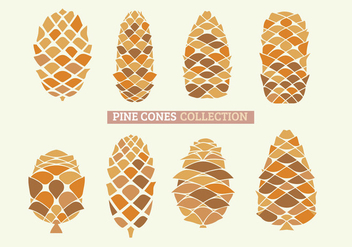 Set of Close Up of Pine Cones with handdraw - Free vector #441951
