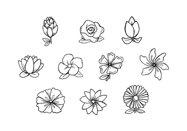 Free Flowers Hand Drawn Vector - vector gratuit #442741