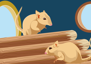 Gerbil Inside Pet House Vector - vector #445171 gratis
