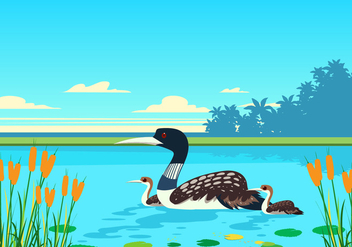 Vector Loon At The Lake - vector #445601 gratis
