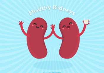 Vector Cute Cartoon Healthy Human Kidney Characters - бесплатный vector #445721