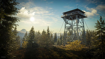 TheHunter: Call of the Wild / The Watchtower - image gratuit #447581