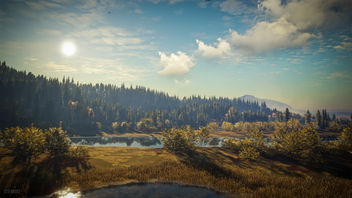 TheHunter: Call of the Wild / Welcome to Sunny Lake - image gratuit #447681