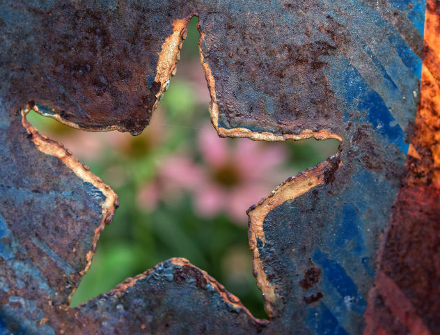 Lone Star - Kostenloses image #448481