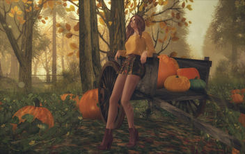 Style - Fall Is In The Air - image gratuit #448811
