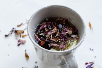 Cup of tea with dry flowers - image #449001 gratis
