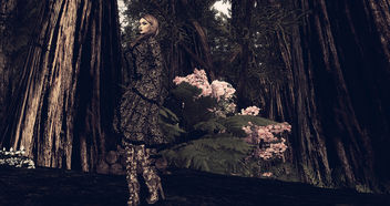 LOTD 66: Autumn Forest (free gifts) - бесплатный image #449721
