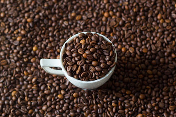 Coffee cup filled with coffee beans - image #450101 gratis