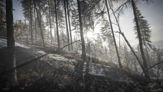 TheHunter: Call of the Wild / At Dawn - Free image #450981