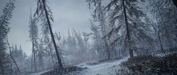TheHunter: Call of the Wild / Its Getting Misty - image gratuit #451581