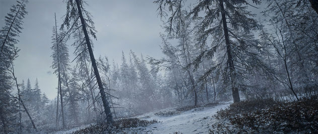 TheHunter: Call of the Wild / Its Getting Misty - image #451581 gratis
