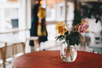 Vase with flowers in a cafe. Colorful blurry background.jpg - image #452151 gratis