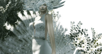 LOTD 85: Feathers (new releases & gifts) - image #452171 gratis