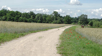 Gravel road - image #452371 gratis