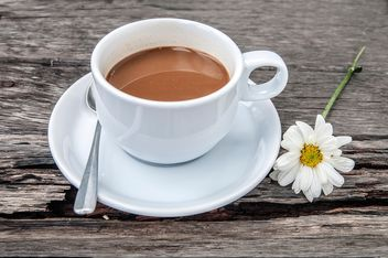 Cup of coffee and flower - Free image #452391