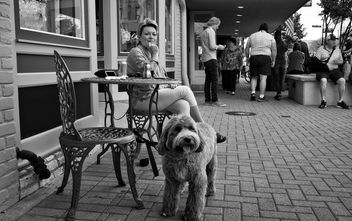 Friendliest Dog! - image #453731 gratis